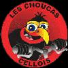 ecorun-logo-partenaire-les-choucas-cellois